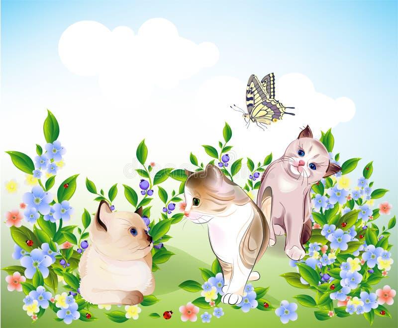 Gatinhos e borboleta ilustração royalty free
