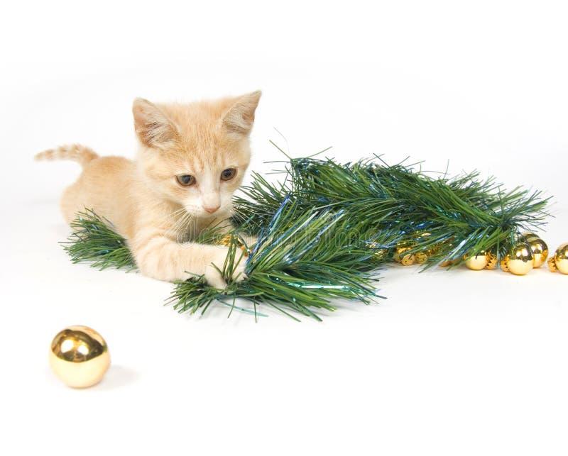 Gatito amarillo que juega con las decoraciones de la Navidad fotografía de archivo libre de regalías