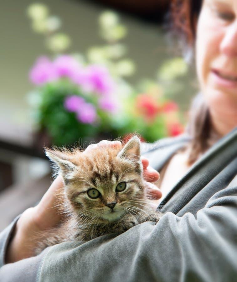 Gatito con la señora imagenes de archivo