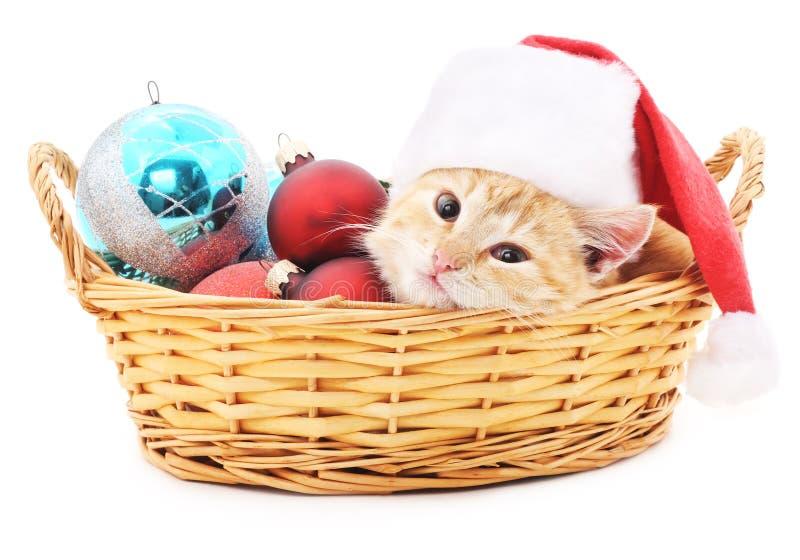 Gatito en cesta con los juguetes de la Navidad imagen de archivo