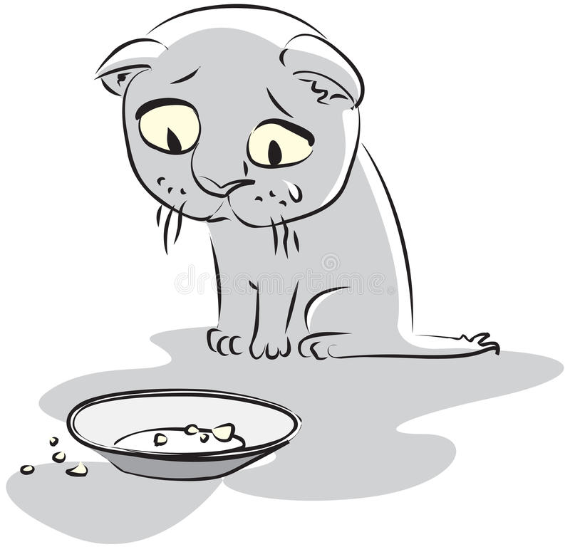 Gatito hambriento ilustración del vector