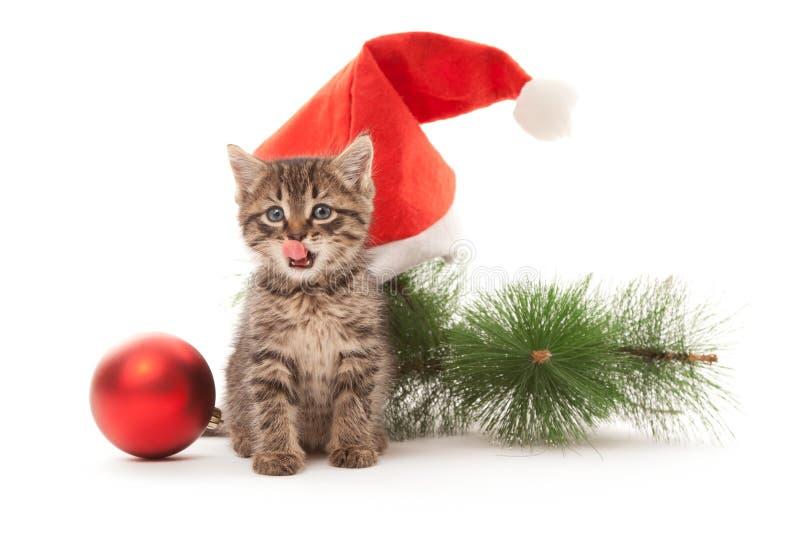 Gatito que se relame sus labios con las decoraciones del Año Nuevo imagenes de archivo