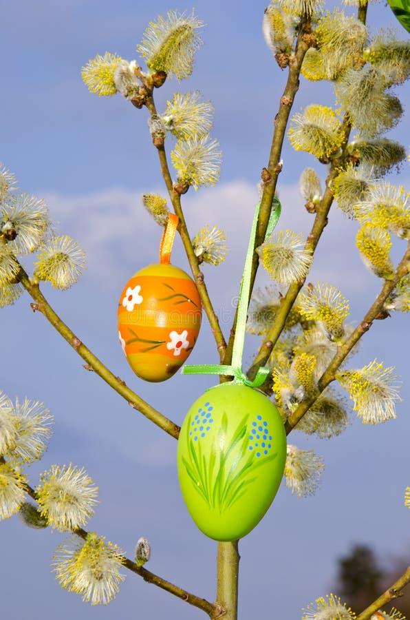 Gatito-sauce de la caída de los huevos del fondo del resorte de Pascua fotos de archivo libres de regalías