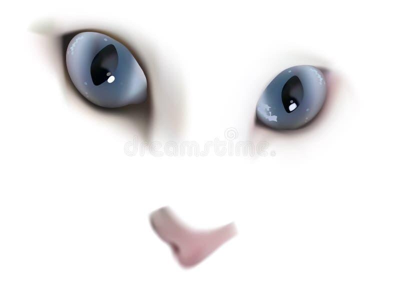 Gato blanco con los ojos azules ilustración del vector