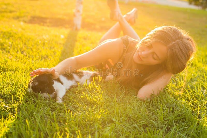 Gato bonito e mulher que jogam com ele o estilo de vida, a amizade e o conceito exteriores do proprietário do animal de estimação fotografia de stock