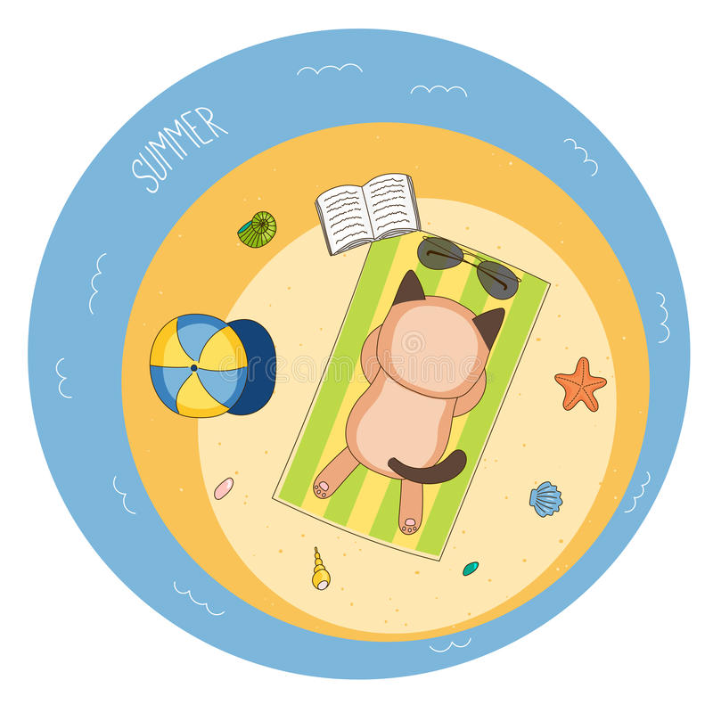 Gato bonito na praia ilustração do vetor