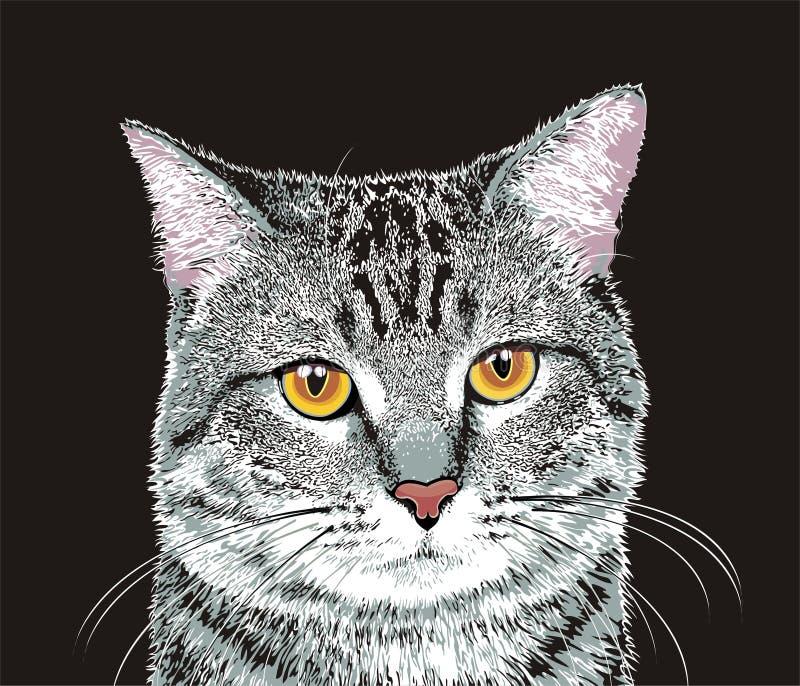 Gato cinzento ilustração stock