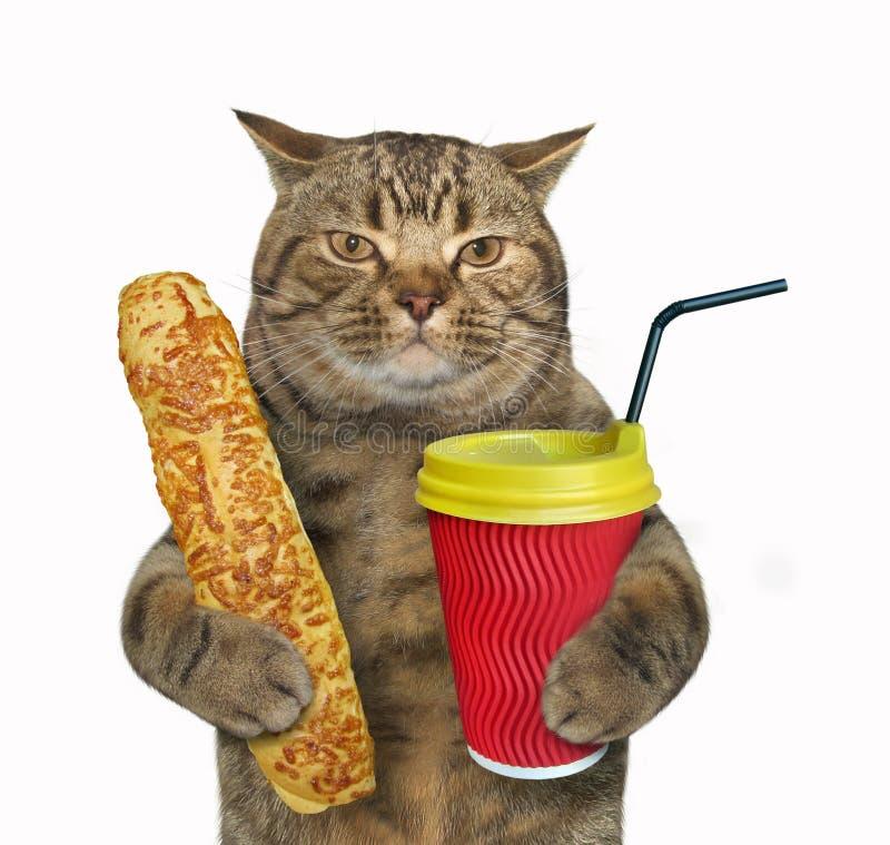 Gato com bolo e cappuccino do queijo foto de stock royalty free