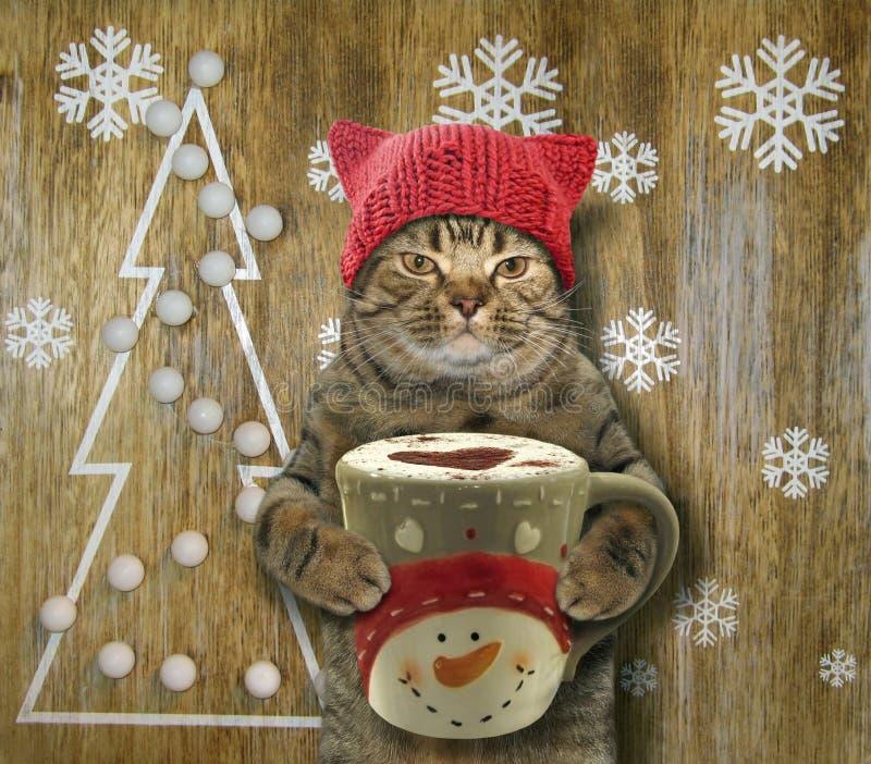 Gato com café e Natal fotografia de stock royalty free