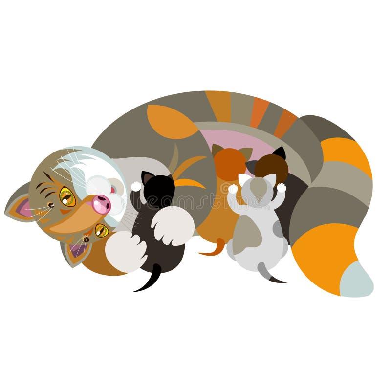 Gato com gatinhos em um fundo branco ilustração royalty free