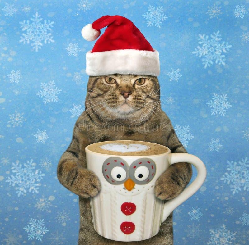Gato com uma xícara de café grande imagens de stock