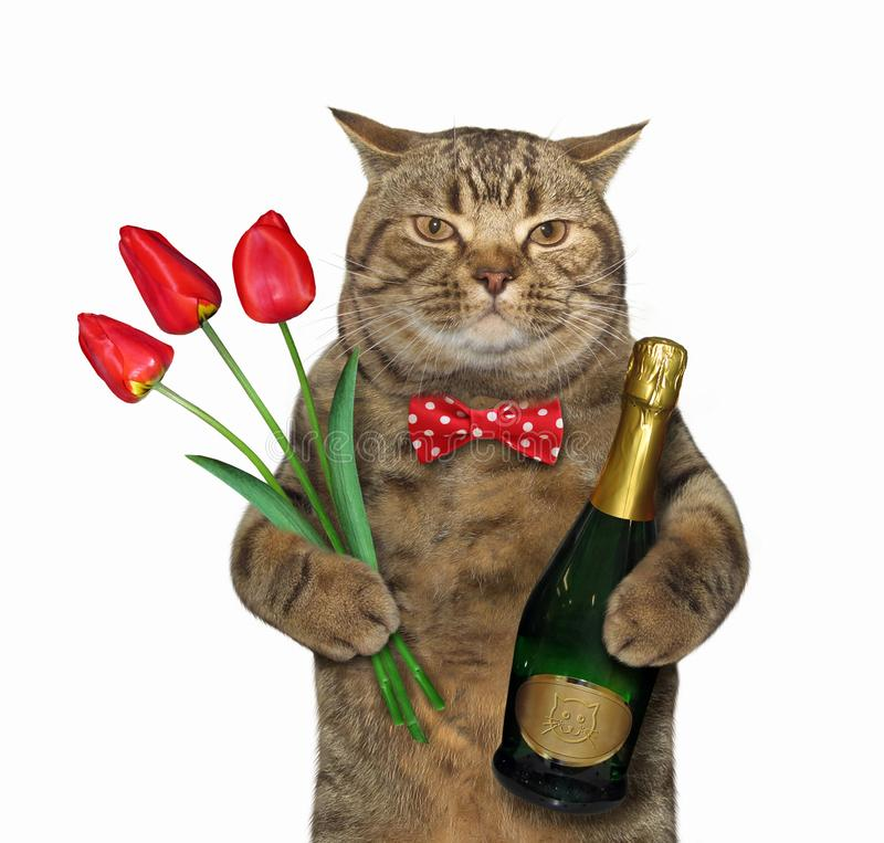 Gato con el vino y los tulipanes stock de ilustración