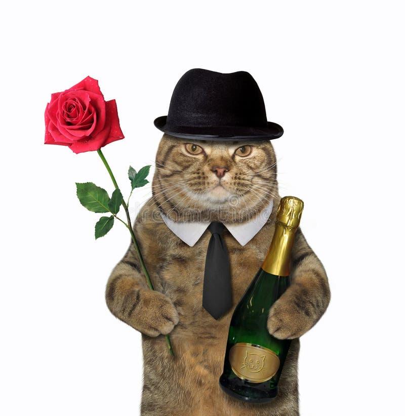Gato con el vino y una rosa imagen de archivo