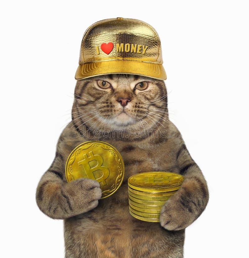 Gato con la pila de bitcoins imágenes de archivo libres de regalías