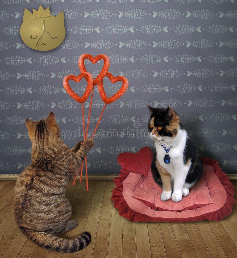 Gato con los corazones de la salchicha cerca de su amante stock de ilustración