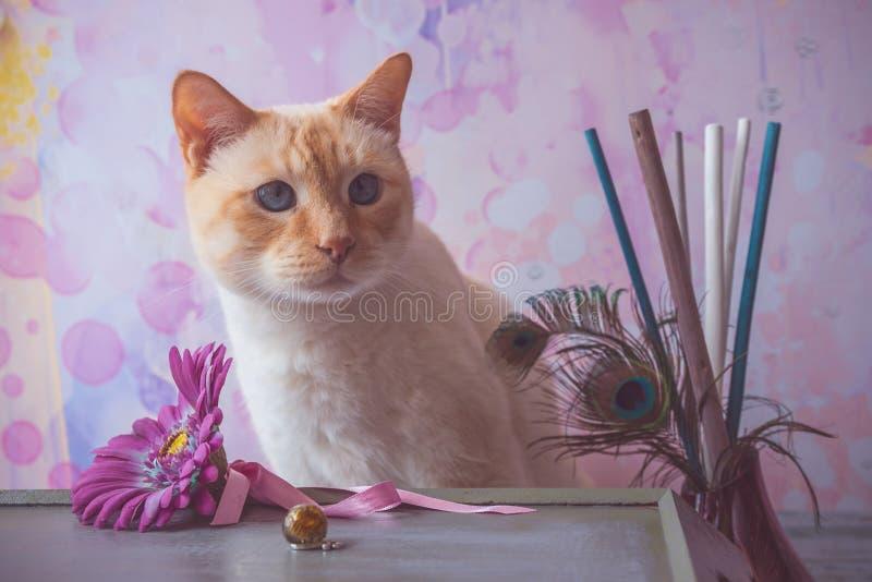 Gato con los cristales de la resina de epoxy y el feathe falso de la flor y del pavo real fotos de archivo