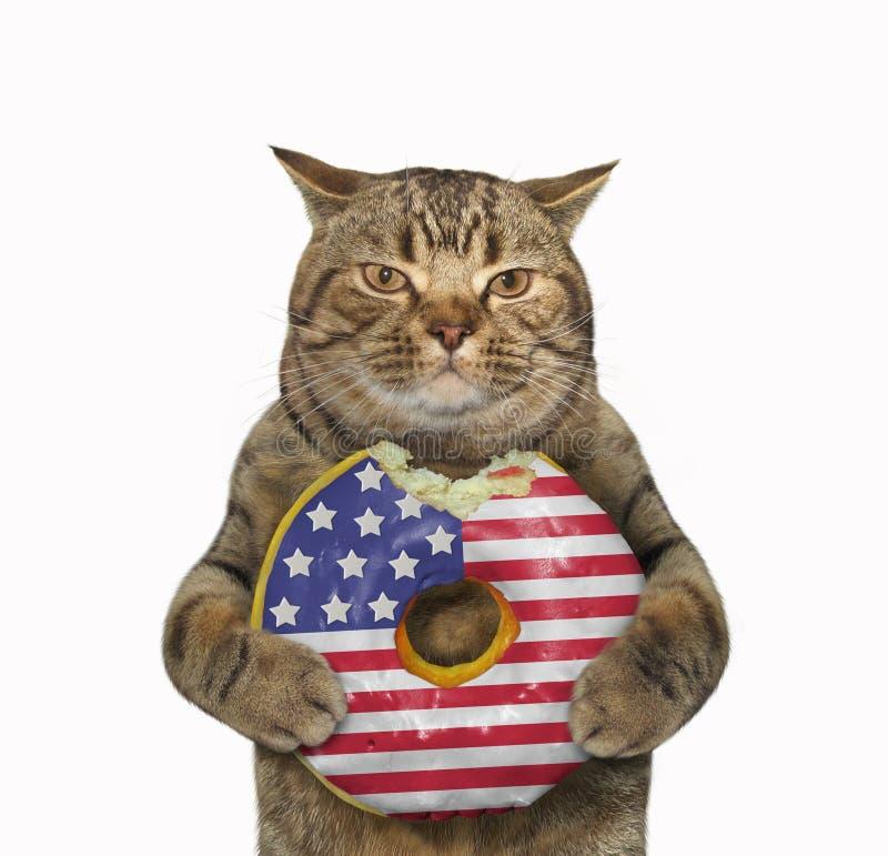 Gato con un buñuelo americano mordido foto de archivo libre de regalías