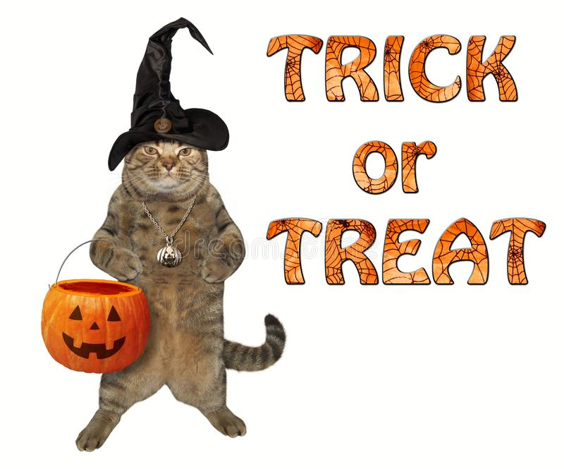 Gato con una cesta 2 de la calabaza stock de ilustración