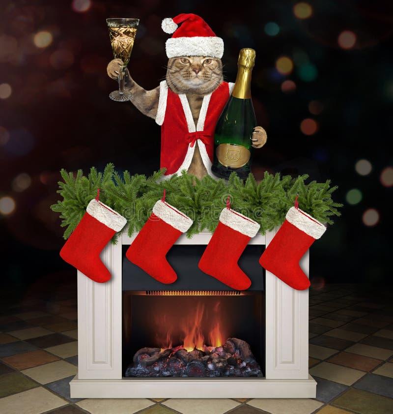 Gato con una copa de vino cerca de la chimenea imagen de archivo libre de regalías