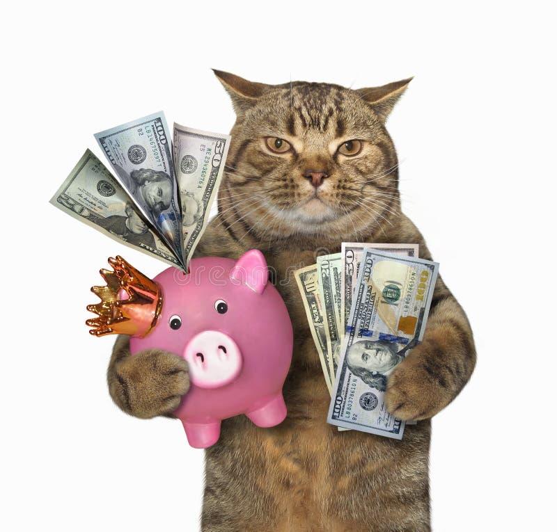 Gato con una hucha rosada fotografía de archivo