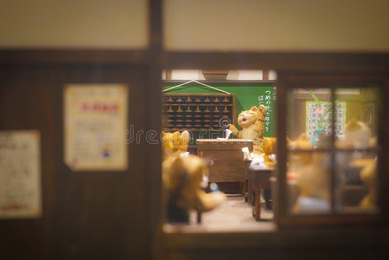 Gato da escola fotografia de stock royalty free