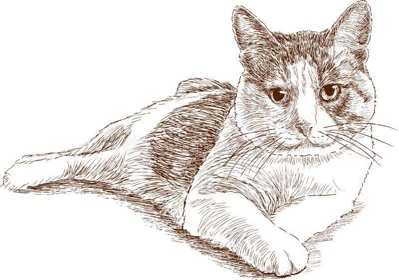 Gato de casa de mentira ilustración del vector