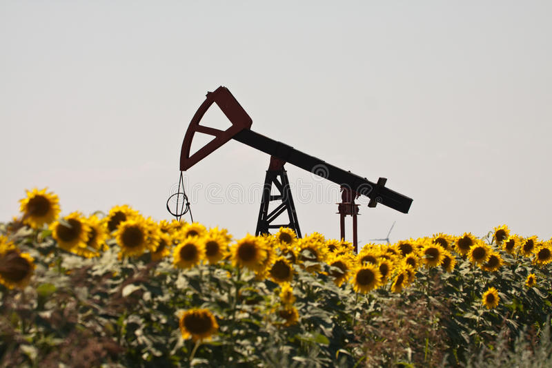 Gato de la bomba de petróleo foto de archivo libre de regalías