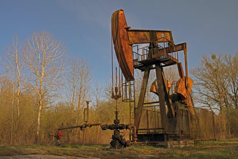 Gato de la bomba de petróleo fotografía de archivo libre de regalías