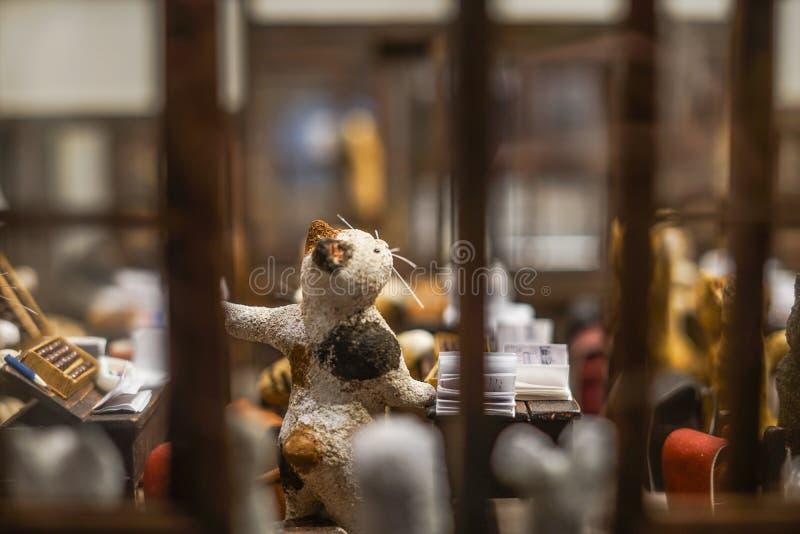 Gato de la escuela foto de archivo libre de regalías