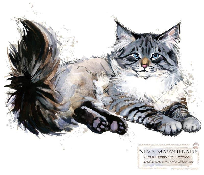 Gato de Neva Masquerade ilustração do animal de estimação da casa da aquarela Os gatos produzem séries ilustração do vetor