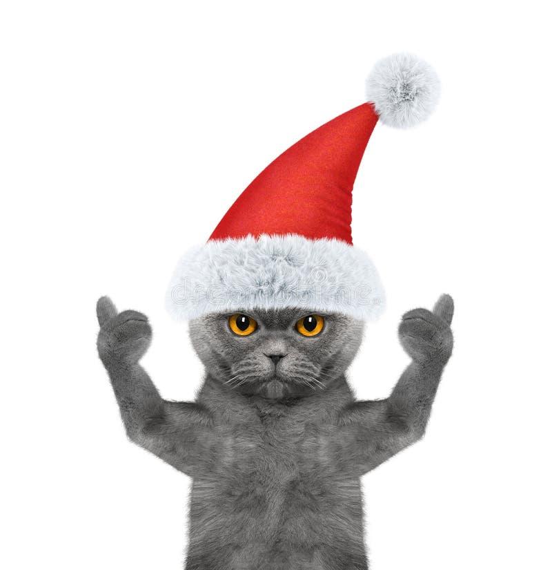 Gato de Santa que mostra o polegar acima e as boas vindas foto de stock royalty free