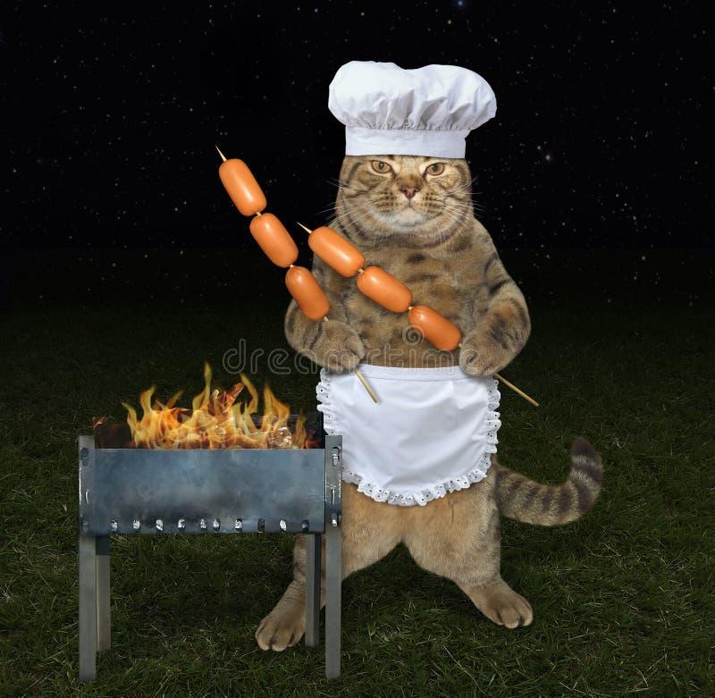 Gato del cocinero cerca de la parrilla fotografía de archivo