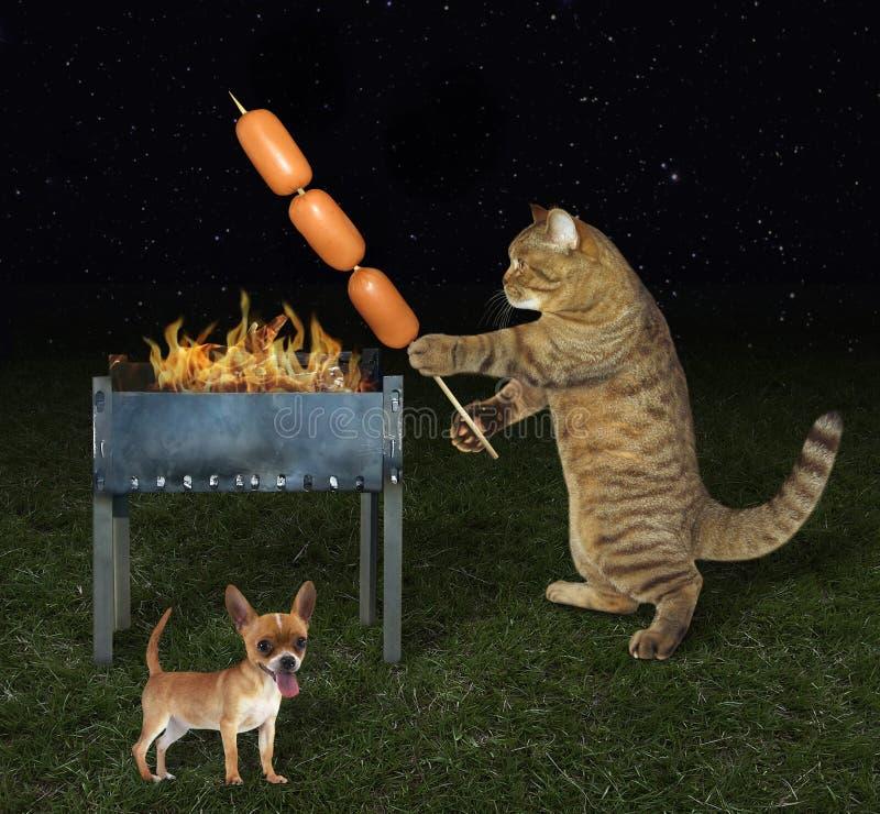 Gato del cocinero cerca de su perro foto de archivo libre de regalías