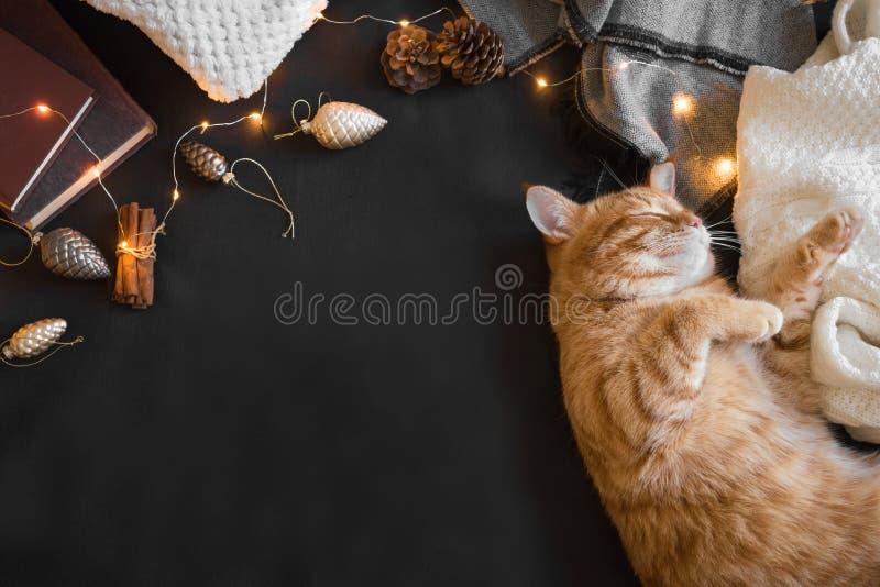 Gato del jengibre de la Navidad imagen de archivo