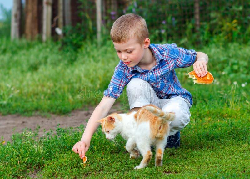 Gato desabrigado do gengibre da alimentação de crianças foto de stock royalty free