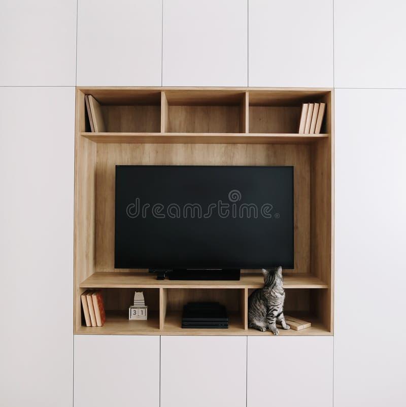 Gato divertido en un interior de la sala de estar con la TV y un guardarropa estilo escandinavo, concepto mínimo diseño interior  imágenes de archivo libres de regalías
