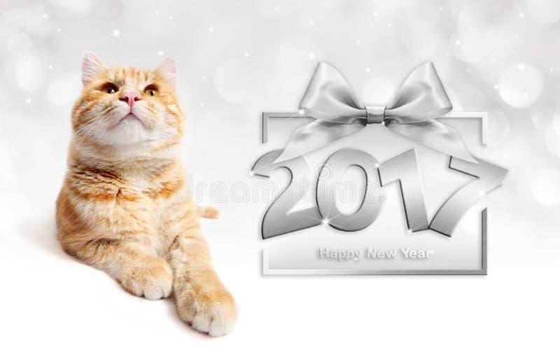 Gato do gengibre e texto de prata do ano novo feliz 2017 com curva da fita foto de stock royalty free
