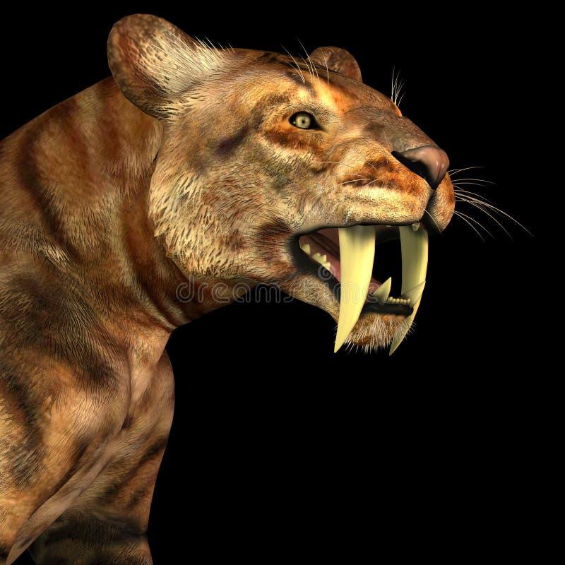 gato do Sabre-dente no preto ilustração royalty free