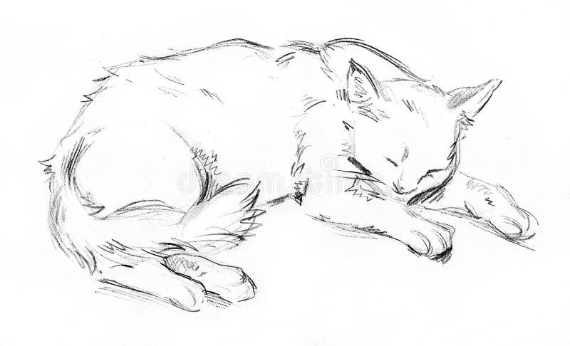 Gato do sono ilustração do vetor