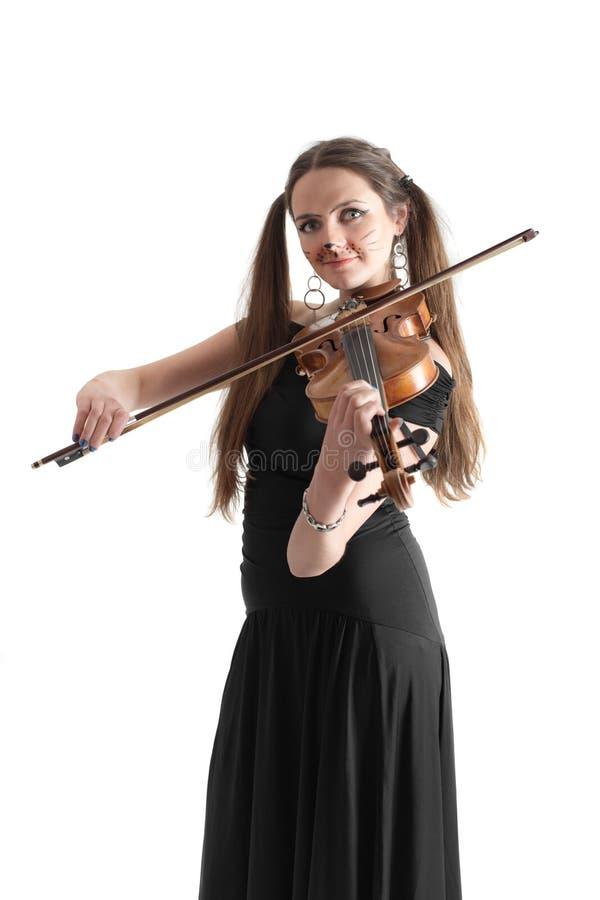Gato do violinista foto de stock