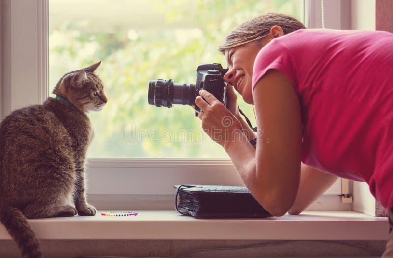 Gato e fotógrafo imagem de stock royalty free