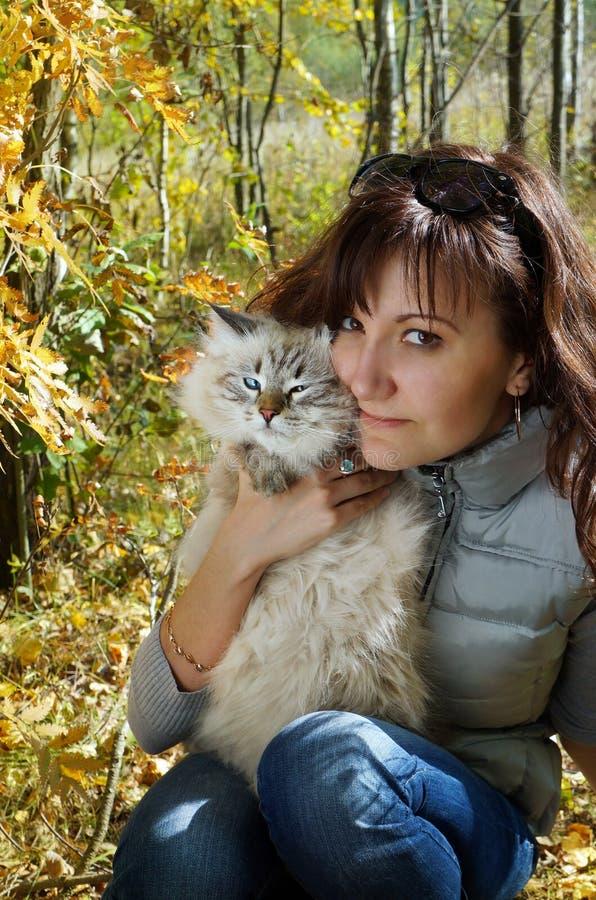 Gato e jovem mulher nevsky Siberian do masqarade imagem de stock