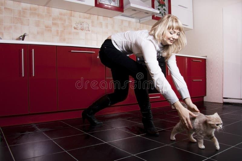 Gato e a mulher na cozinha imagem de stock