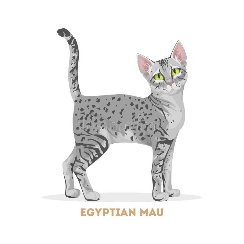 Gato egípcio do mau ilustração stock