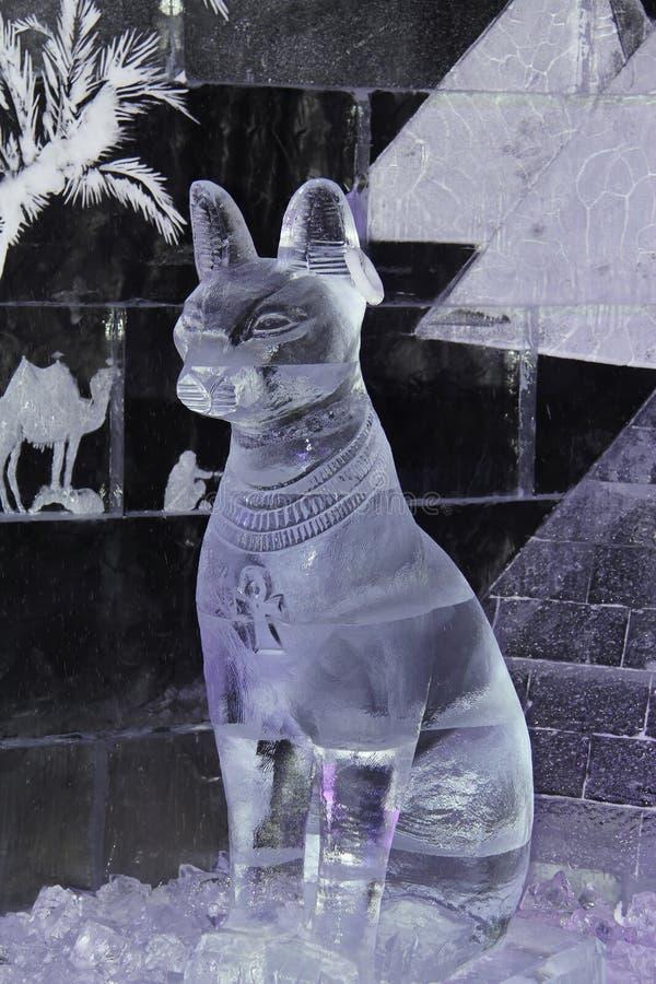 Gato egipcio sagrado del hielo imagen de archivo libre de regalías