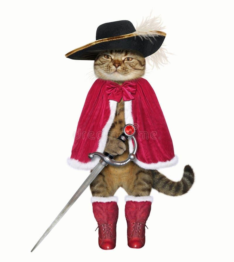 Gato em um casaco vermelho com uma espada fotos de stock