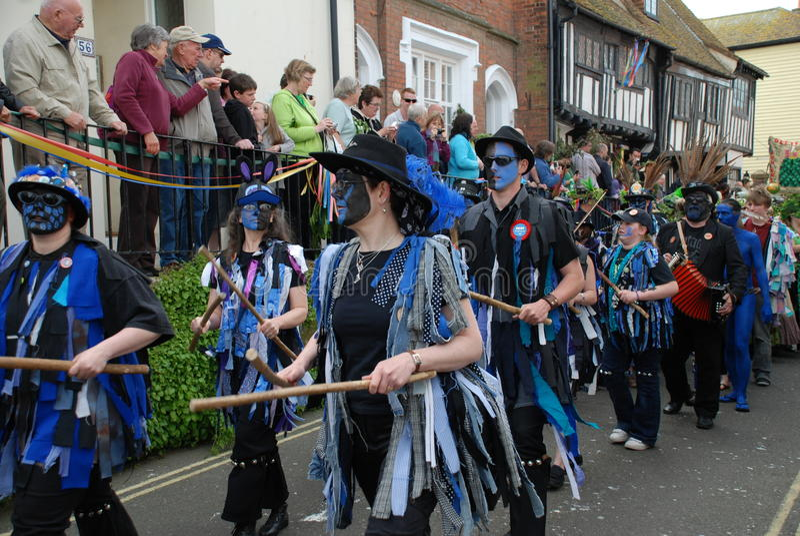 Gato en el festival verde, Hastings fotografía de archivo libre de regalías