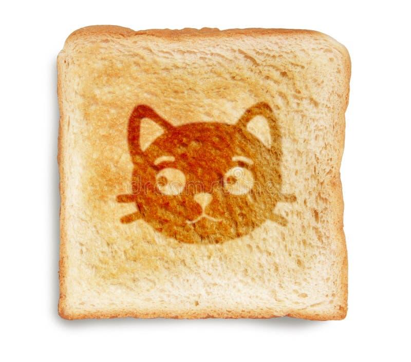 Gato en el pan tostado imagen de archivo libre de regalías