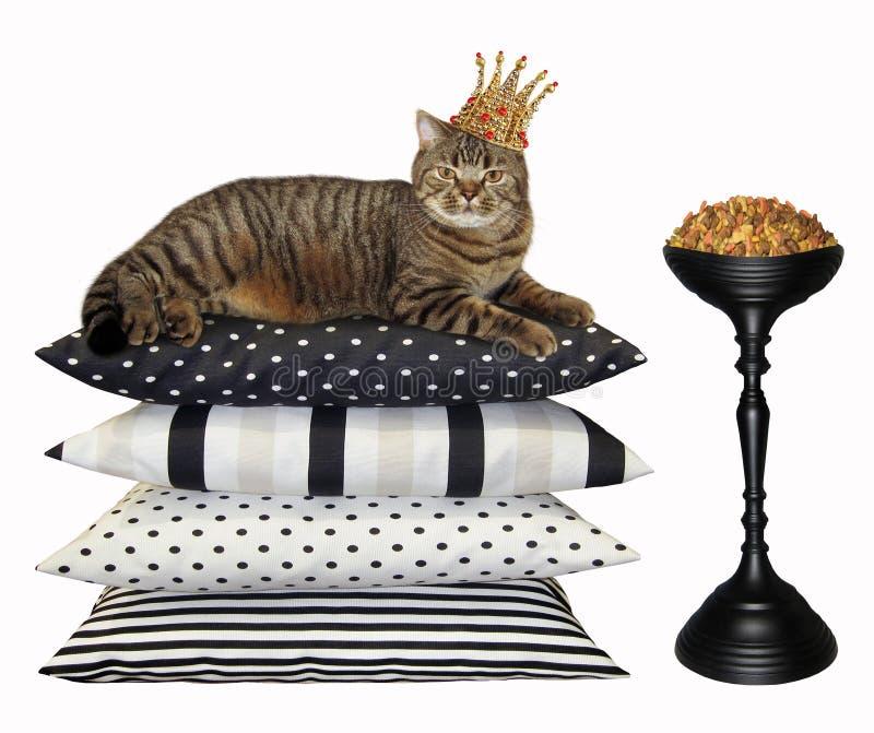 Gato en la corona cerca de la alimentación seca 2 fotografía de archivo
