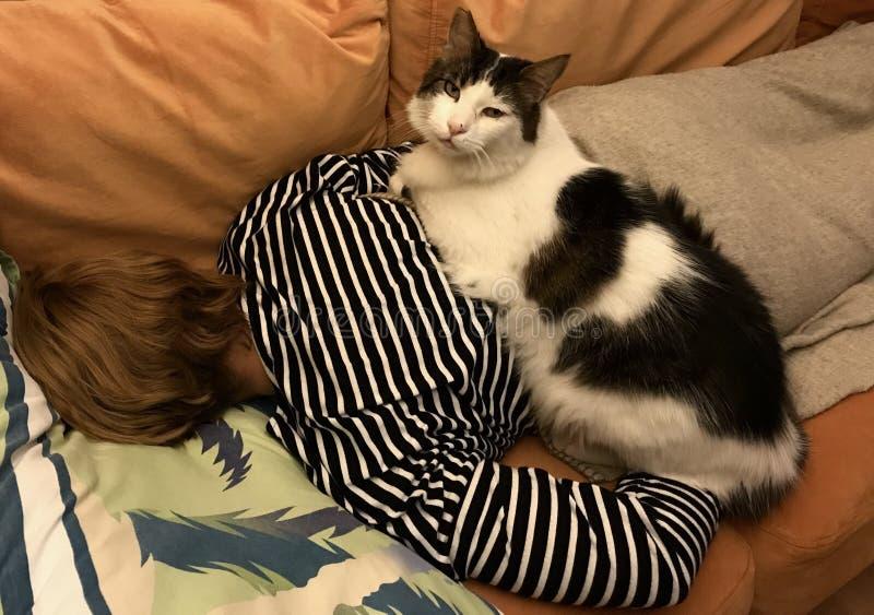 Gato en mujer durmiente fotografía de archivo